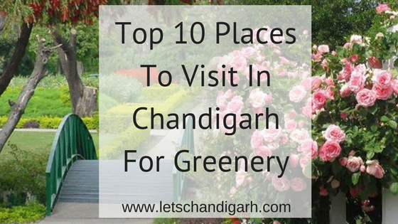 Most-beautiful-places-Chandigarh