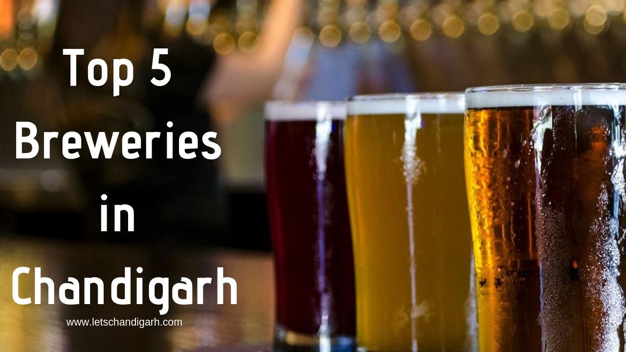 Top 5 Breweries in Chandigarh